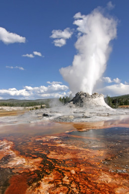 Yellowstone National Park, Castle Geyser