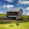 Feeding America—Family Farm to Factory Farm