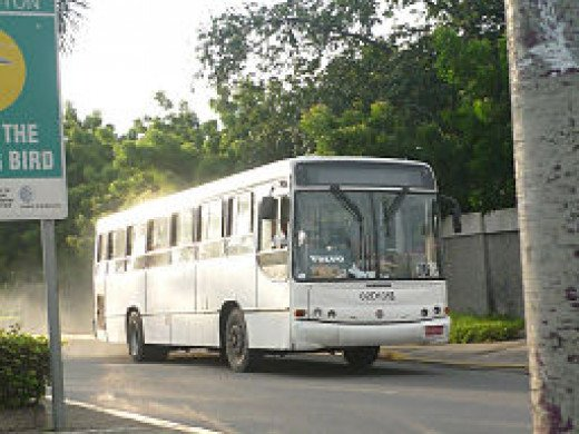 A Jamaica Urban Transit Bus plying its route