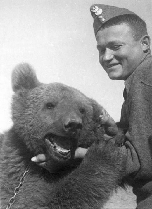 Wojtek and Polish Soldier, World War II