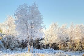 Winter season is here