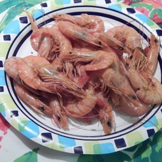 These shrimp are freshly removed from the pot.