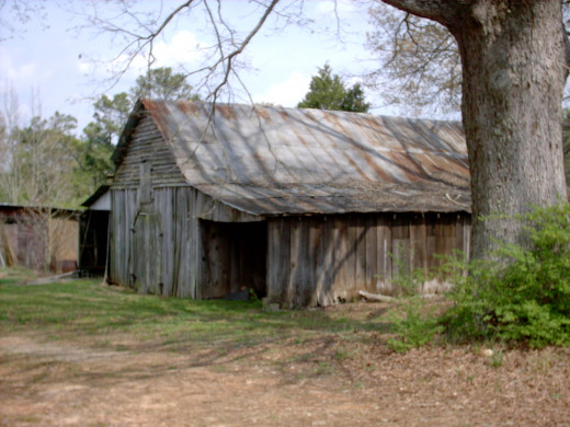 the old home place, a family gathering location, at Thanksgiving..