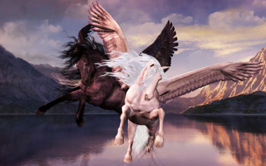white and black pegasus