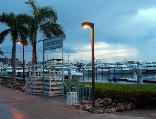 Miami Beach Marina from dinner.