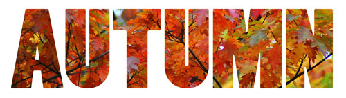 Autumn word art with colorful fall leaves pattern fill