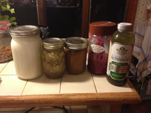 Yogurt, bread and butter pickles, fermented applesauce, red cabbage sauerkraut, kombucha (store bought)