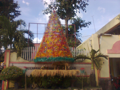 A recycled Christmas tree in front of our office building
