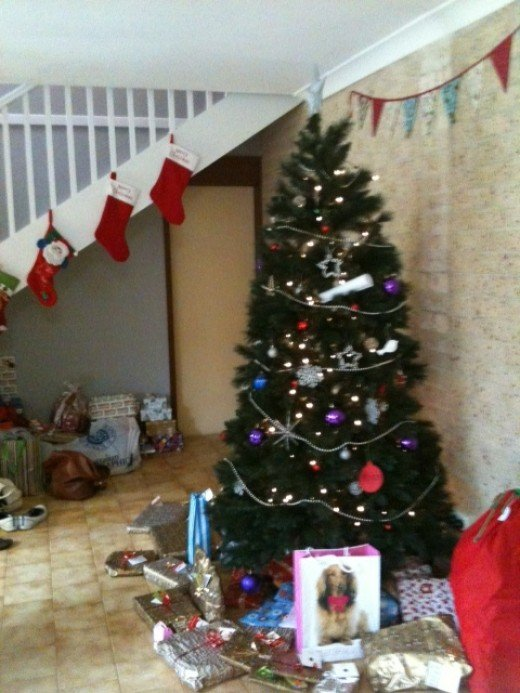 O Christmast Tree! O Christmas Tree!