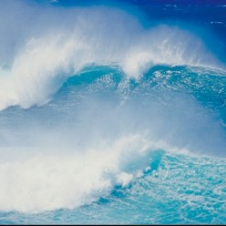 Most waves travel in sets of between 6 - 8 waves.  Sometimes the first or last wave in the set is by far the wildest and best ride.