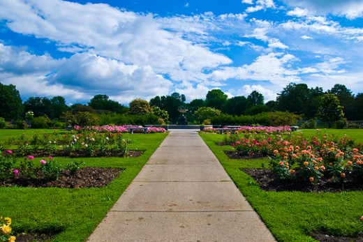 Lyndale park rose garden in Minneapolis