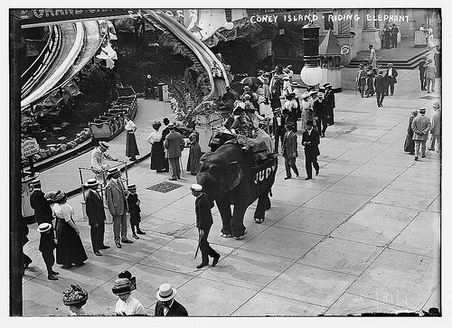 Live elephants roamed the park all day with their trainers, and some of the herd was employed for elephant rides. Prior to opening, they helped to build the park.
