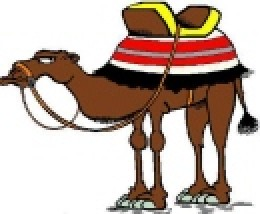 Sopwith is a grumpy camel, who won't let you ride him, but will happily spit in your eye.