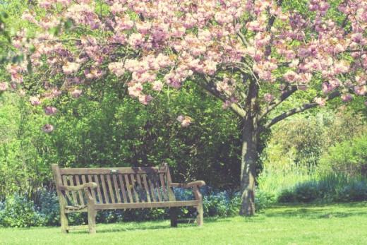 Spring Garden Vintage Colors by Karen Arnold