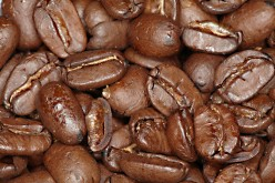 Antibacterial Activity of Roasted Coffee Beans and Caffeine