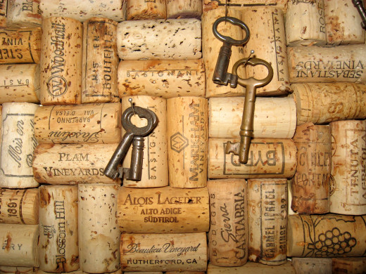 Once you've filled up the cork cage, you're ready to make some crafts. This links to lots of ideas for projects.
