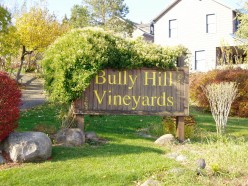 Visit Bully Hill Winery
