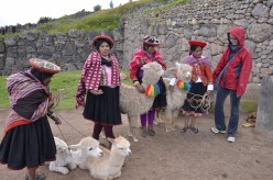 Highlights of Machu Picchu and the Inca Trail