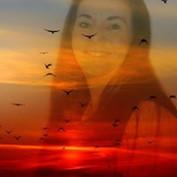 Jackie Paulson profile image