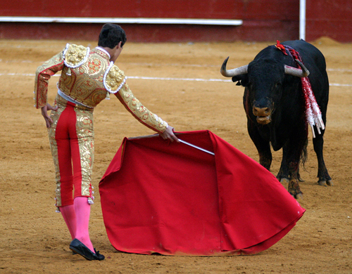 Traditional Bullfighting