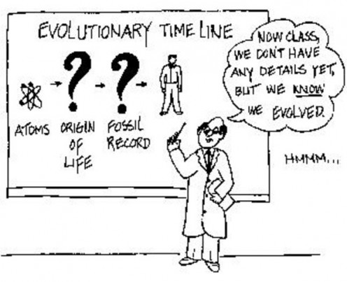 Evolution in the Classroom