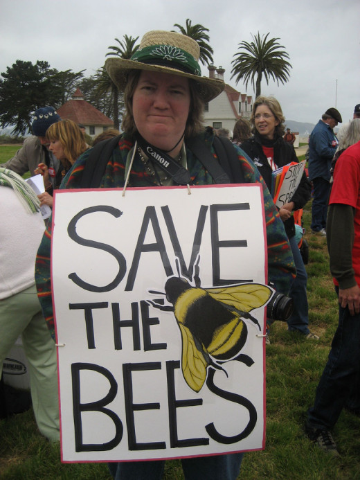 Poster from the Golden Gate Bridge protest against spraying with pesticides to eradicate moths.