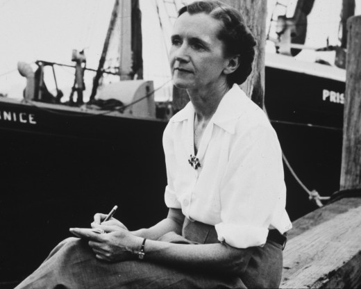 Rachel Louise Carson (May 27, 1907 – April 14, 1964) author of Silent Spring and the first person to bring environmental concerns over the use of pesticides. Her book led to a nationwide ban on DDT and other pesticides.