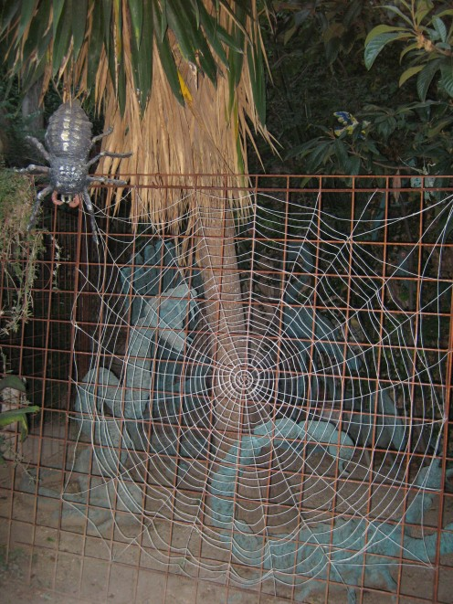 Spider's web with large Scorpions behind