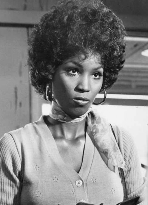 You're under arrest, sugah!   Lovely Teresa Graves as Christie Love. Doesn't she remind you, just a little bit of Whitney Houston?