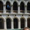 lmoynihan082 profile image