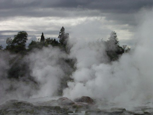 Steam and boiling pools at Rotarua
