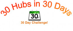 30 Hubs in 30 Days Challenge Score and Traffic Activity Log