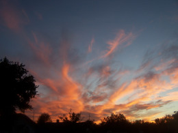 His splendor of the day is unmatched...
