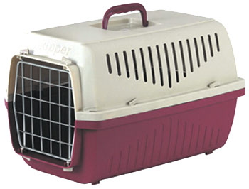 Ensuring your pet stays safe whilst travelling is a must for all pet owners