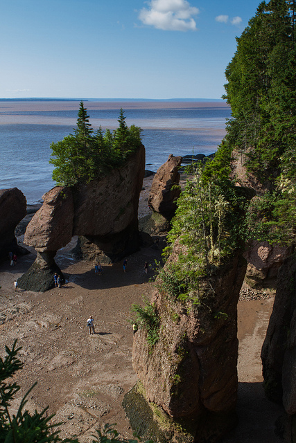 Over 100 billion tons of water come and go twice each day around the Hopewell Rocks. At low tide visitors can walk on the ocean floor which just mere hours earlier had been covered with water.