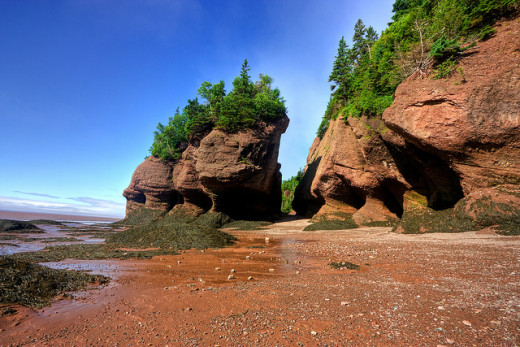 The Flower Pot Rocks get their name from the unusual erosion caused by the world's highest tides as they come and go around the rocks in the Bay of Fundy.