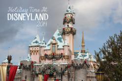 Holiday Time At Disneyland 2014