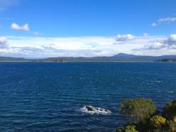 The windswept coast off Eden (c) A Harrison