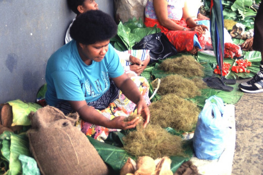 Edible algae seller at Suva Market