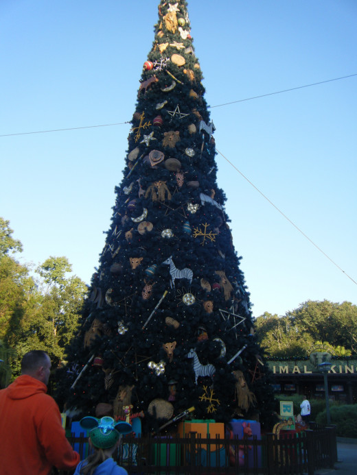 The giant tree outside of Animal Kingdom.