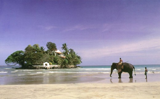 Creative tourism unique to Sri Lanka