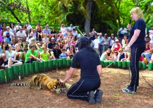 Pinecrest Gardens Wild Animal Demo