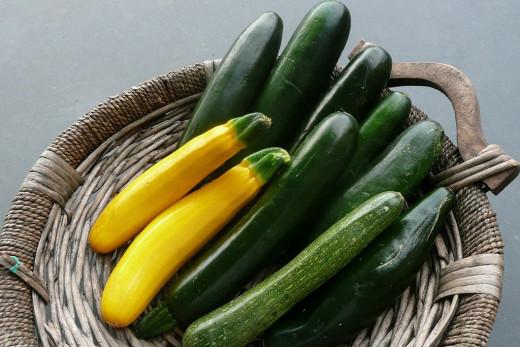 Zucchini or Squash?