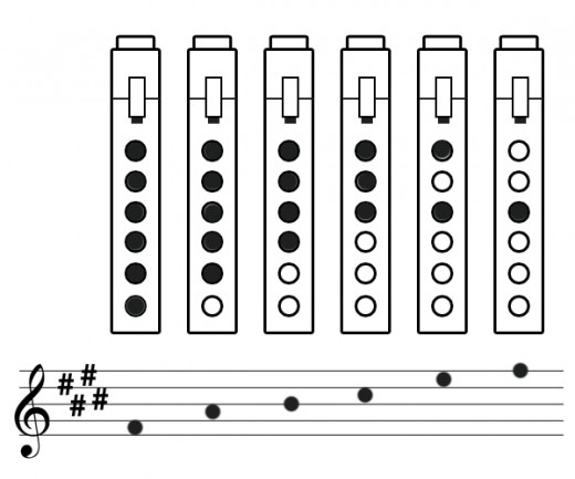 This is a basic pentatonic scale. The black dots are the covered finger holes. The white holes are the uncovered finger holes. The blowing hole is on the top of the image.