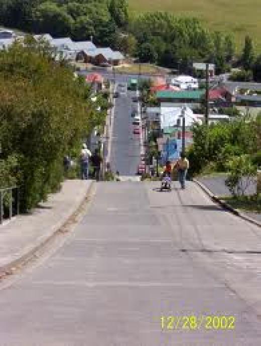 Baldwin Street - Steepest Street in the World!