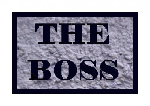 The Boss Clone