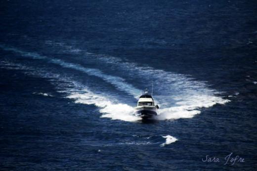 Boat in Berlengas