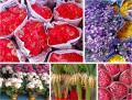 Bangkok: Pak Khlong Talat Flower Market