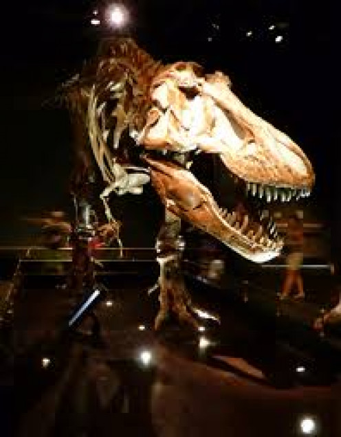 Dinosaur Museums