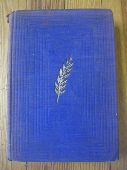 Good picture of a first edition Ann Vickers by Sinclair Lewis looks like, without the dust jacket.